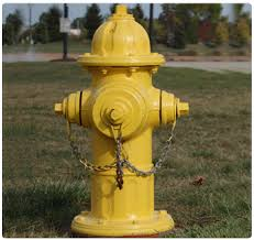 It's Time To Paint The Fire Hydrants-Saturday April 22 8 am